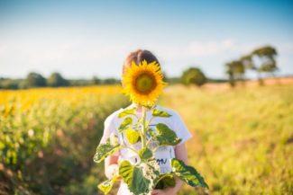 zonnebloem-authentiek-verhaal